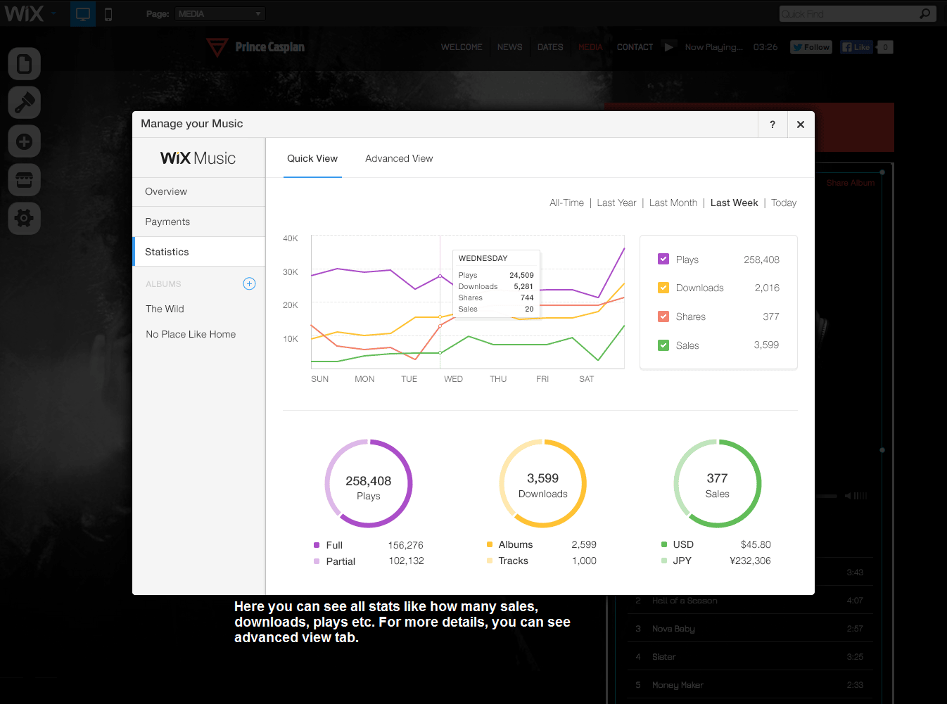 wix music stats like number of music sales, downloads, plays & advanced statistics.